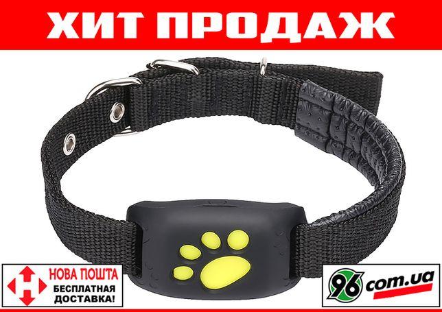 Лучший gps tracker для собак кошек животных (навигатор трекер ошейник)