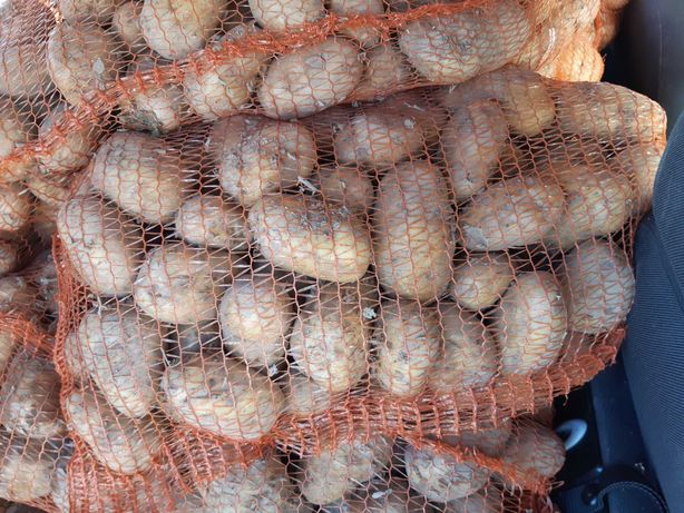 Ziemniaki Dostawa gratis