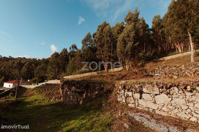 Lote de terreno para construção em Abade de Neiva, Barcelos