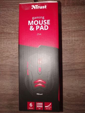 Мишка и коврик для компьютера
