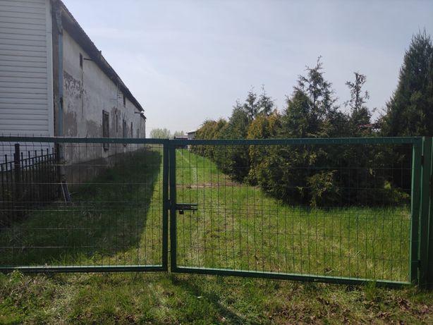 Działka budowlano-rolna Dobrzyń gmina Lubsza