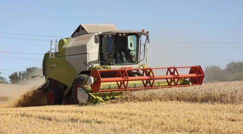 Usługi rolnicze zbiór traw   fendt strautmann koszenie zbóż rzepak