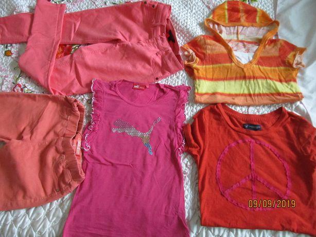 Komplet ubrań ,spodnie bluzki Puma 140-146