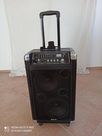 Coluna Amplificador bom estado