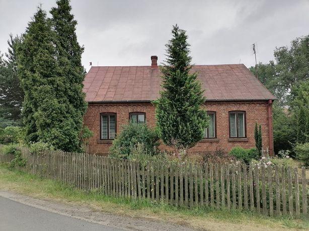 Dom z łąka+ mały las z ogrodem