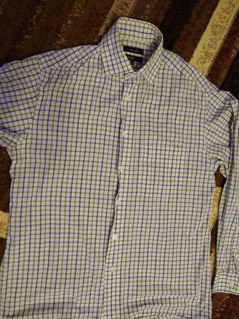 Koszula męska M kappahl