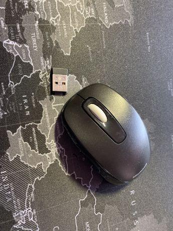 Rato Microsoft, estado novo