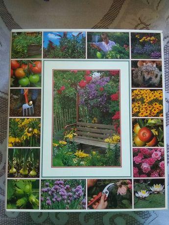 Книга Сад моей мечты папка з інструкцією створення та догляд за садом