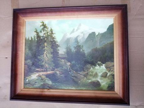 Obraz rzeka drzewa