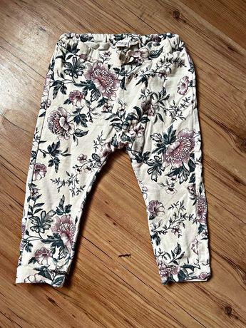 Spodnie Newbie
