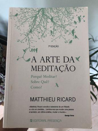 A arte da meditacao