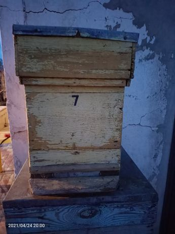 Нуклеус пчелиный на 6 рамок + сушь в комплекте