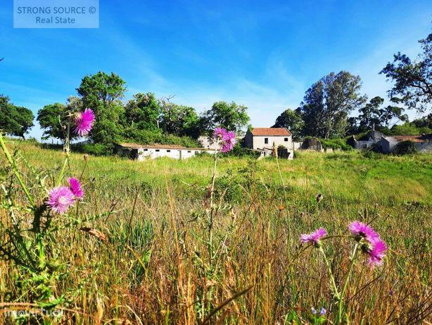 Vende-se Quinta muito bonita e bem situada, com terreno d...