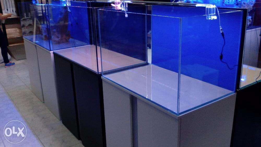 Aquario com movel novos 100x50x50