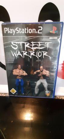 Street Warrior playstation 2