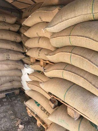 Кава (кофе) смажена в зернах ОПТ.