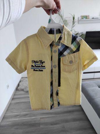 Сорочка,рубашка,теніска