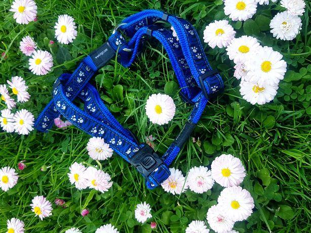 Szelki dla psa buldog M niebieskie