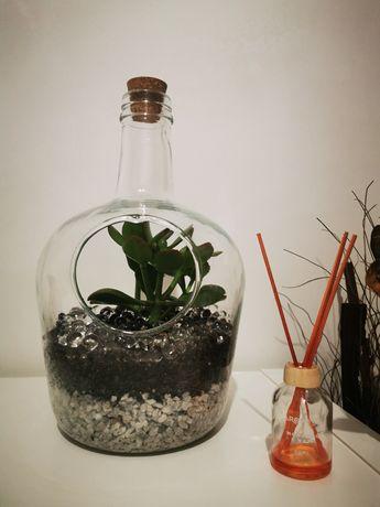 Conjunto vaso de vidro