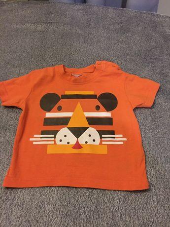 Koszulki rozmiar 80