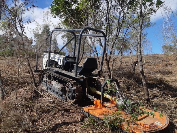 Limpeza de terrenos, desmatacao