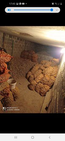 Ziemniaki młode bardzo smaczne ekologiczne