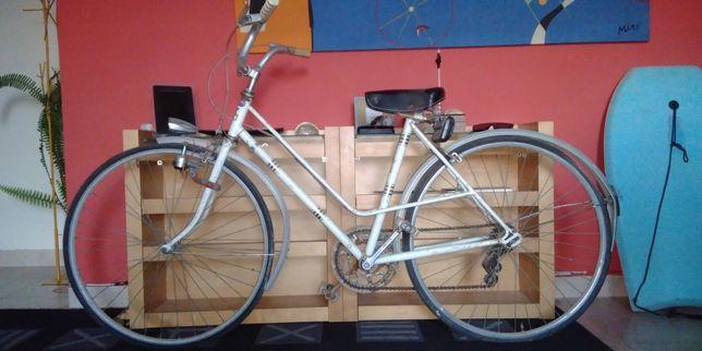 """Bicicleta  Pasteleira """"Esmaltina"""""""