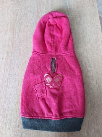 Ubranko dla psa , suczki , różowe z motylem dla szczeniaka XS/S