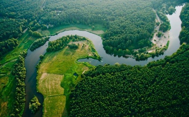 Sprzedam Ośrodek Wypoczynkowy nad Rzeką Wartą w Toporowie