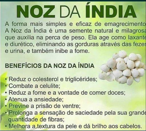 Noz da Índia - 15 Nozes - 25€ - ENVIO GRÁTIS