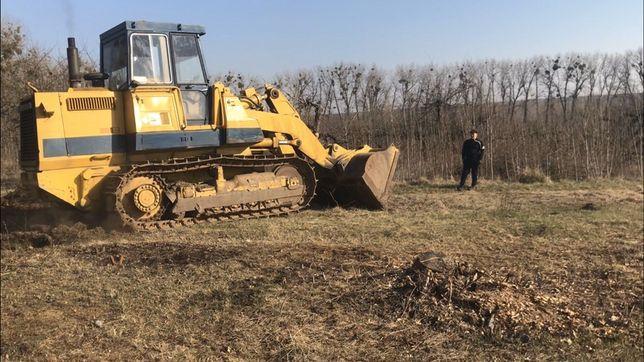 Корчування дерев, садів, пнів, розчищення території, лісосмуг.