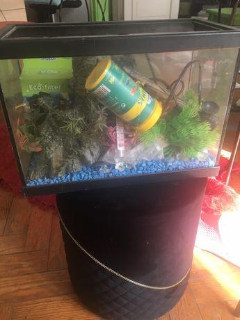 Aquario e kit de acessorios