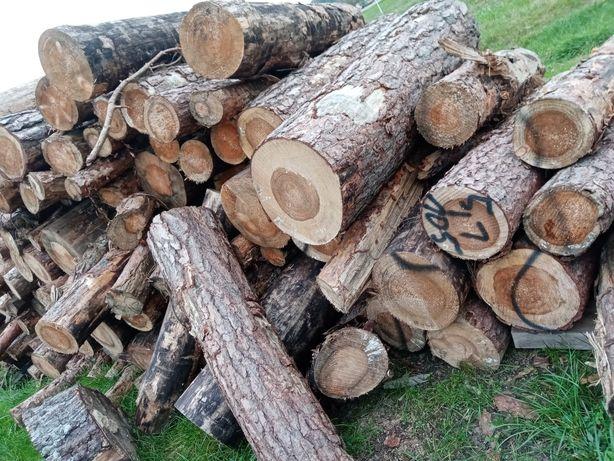 Sosnowe drewno opałowe