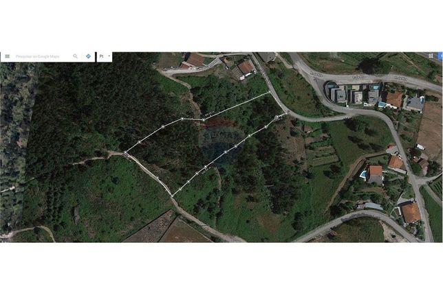 Terreno Urbano\florestal Covelas. Aceito propostas ou permuta