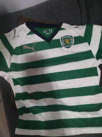 T-shirt de criança 4 ,5 anos oficial do Sporting clube de Portugal