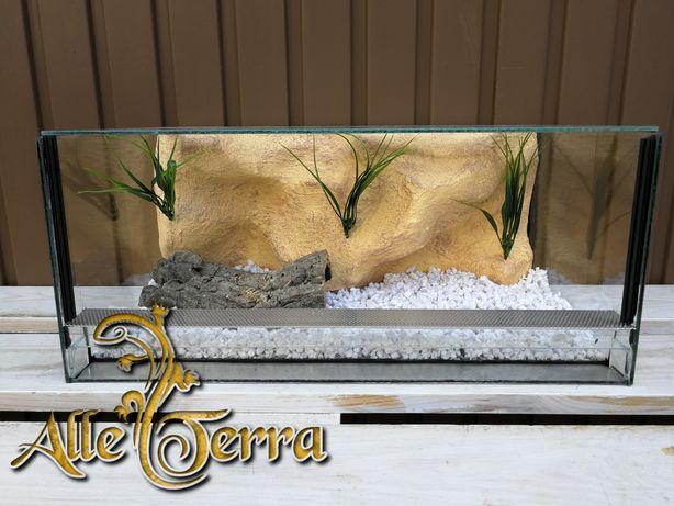 Terrarium szklane o pustynnym wystroju 50x30x22 cm.