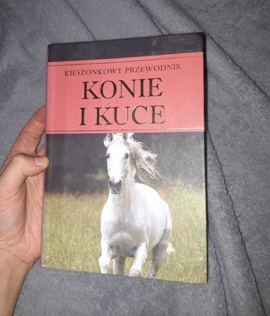 Konie i kuce Kieszonkowy Przewodnik