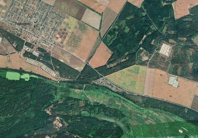 Продам участок в Бориспольском районе