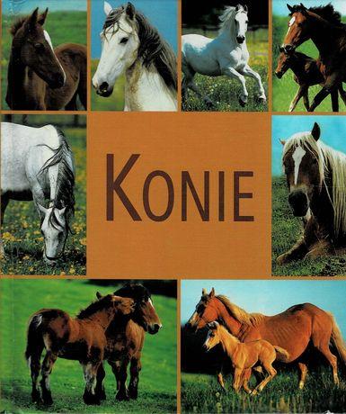 Konie - album i poradnik