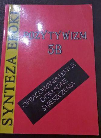 Literatura Polska Antyk, średniow. renes, barok, oświe.dwudz,Opracow.