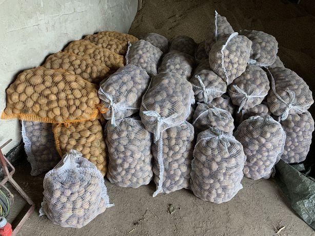 Swojskie Ziemniaki