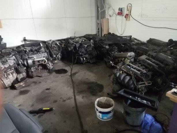 Toyota Corolla Verso corolla e12 Avensis t25 silnik kompletny 1.6 3zz