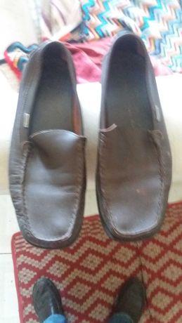 Sapatos Lacoste numro 40.