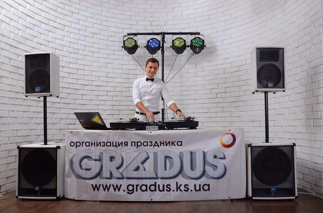 Музыка на корпоратив, свадьбу, музыкант ди-джей ведущий DJ выпускной