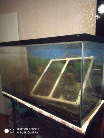 продам аквариум цельноклееный 200 л