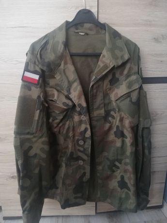 Mundur wojskowy / spodnie, pasek i bluza