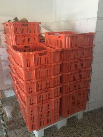 31 Cestos de plástico de pão para padaria