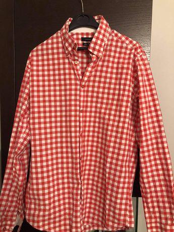 Koszula meska w kratke lavard