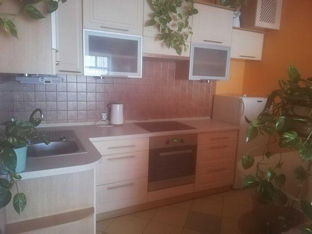 Wynajmę bezczynszowe mieszkanie w centrum Malborka .37m