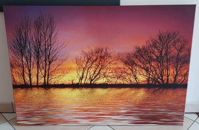 """Obraz 70 x 100 cm na płótnie """"Purple sun"""""""